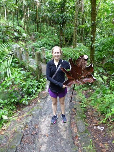 Katie holding up a huge leaf while hiking in the rain forest in Puerto Rico