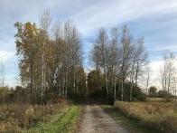 A popular trail near our home